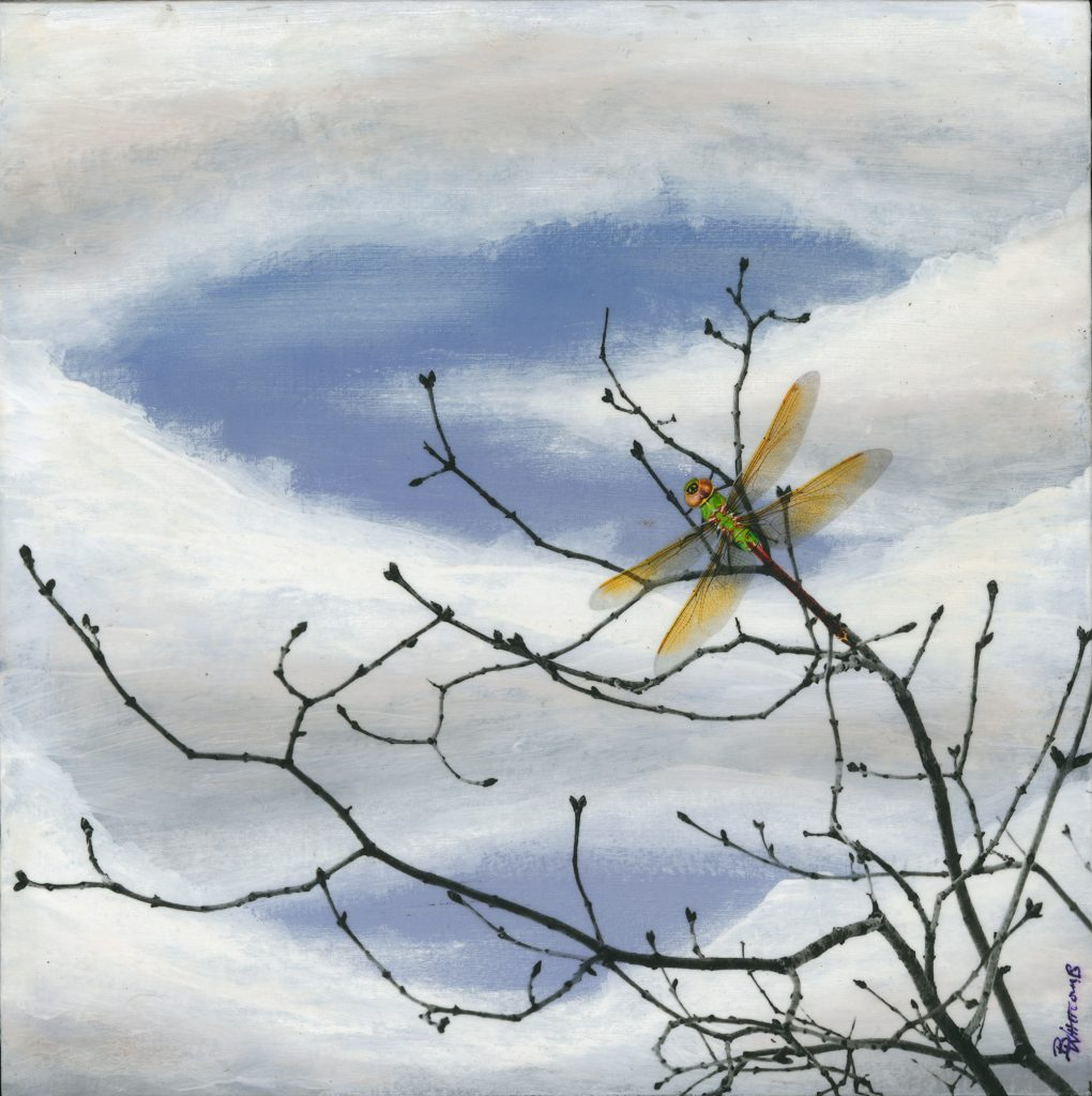 Dragonfly Sky, a mixed media artwork by Brady Whitcomb